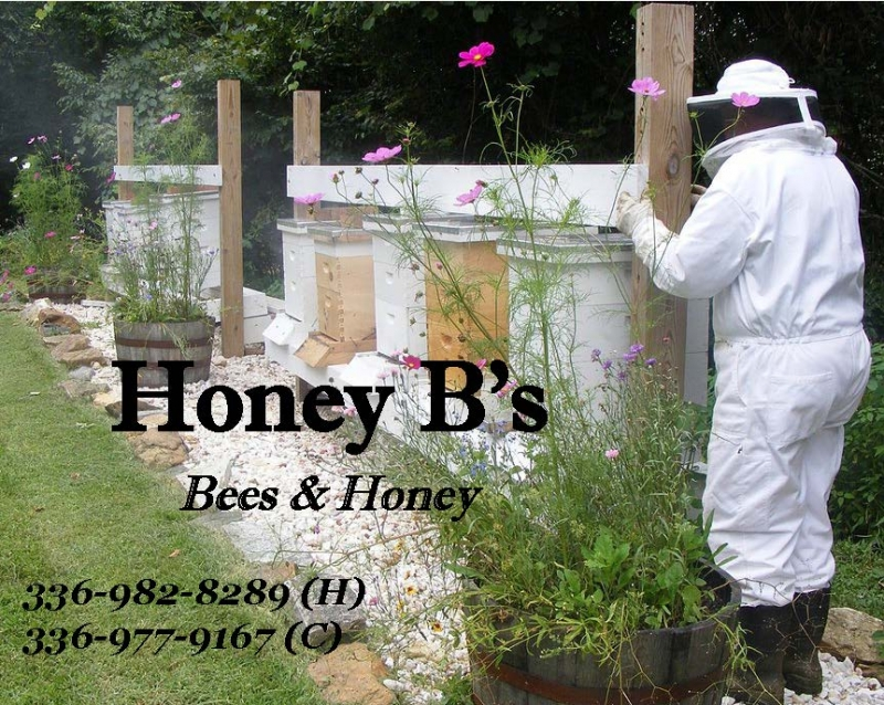 Honey B's Bees & Honey