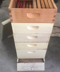 Beekeeping Hives (complete) and other miscellaneous supplies for sale Doug Ehrhardt